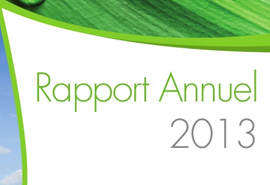 rapport-annuel-2013-v2